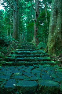 熊野古道大門坂の写真素材 [FYI01645670]