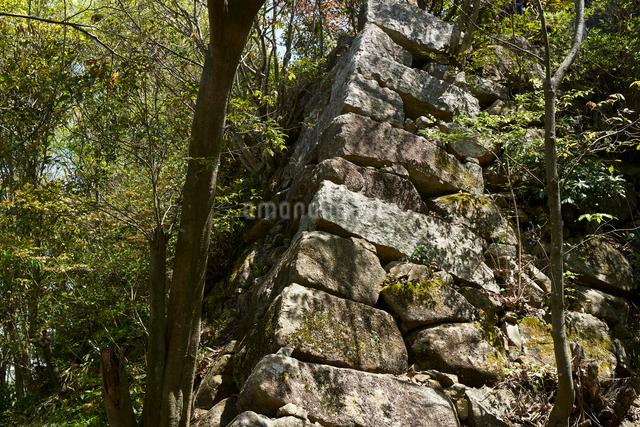 八幡山城跡の写真素材 [FYI01645710]