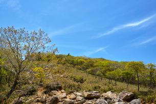 御在所岳の写真素材 [FYI01645816]