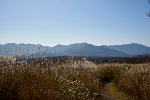 鬼女台から望む蒜山高原方面の写真素材 [FYI01645896]