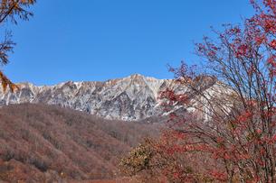 奥大山スキー場より望む大山の写真素材 [FYI01645927]