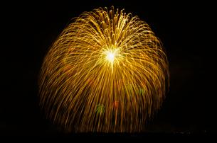 こうのす花火大会の三尺玉で黄金すだれ小花浮模様の写真素材 [FYI01646073]