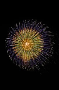 常総きぬ川花火大会の三重芯変化菊の写真素材 [FYI01646160]