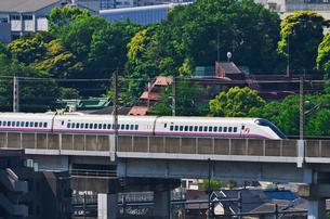 東京を走る秋田新幹線E3系こまちの写真素材 [FYI01646185]