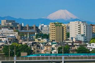 富士山と東京を走る東北新幹線E5系はやぶさの写真素材 [FYI01646192]