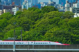 東京を走る秋田新幹線E6系スーパーこまちの写真素材 [FYI01646240]