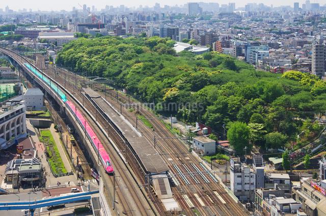 新緑の東京を走る東北新幹線はやぶさと秋田新幹線スーパーこまちの写真素材 [FYI01646257]