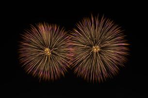 こうのす花火大会の尺玉同時打ちの写真素材 [FYI01646269]
