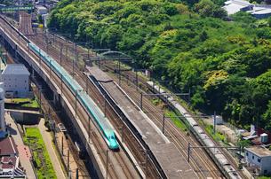 新緑の東京を走る東北新幹線はやぶさの写真素材 [FYI01646320]