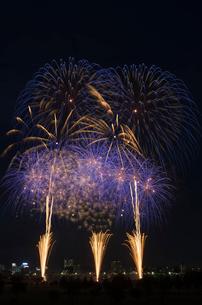 とりで利根川大花火の夜空deアミーゴの写真素材 [FYI01646364]
