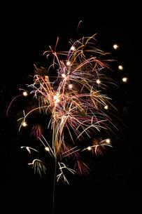 土浦全国花火競技大会の創造花火で天空彩る祈望花の写真素材 [FYI01646396]