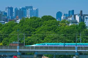 新宿・池袋をバックに東京を走る東北新幹線E5系はやぶさの写真素材 [FYI01646420]