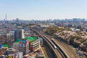 桜咲く青空の東京を走る2階建て上越新幹線E4系Maxの写真素材 [FYI01646427]