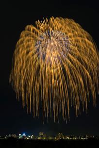 とりで利根川大花火の錦冠の大玉の写真素材 [FYI01646446]
