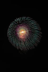 土浦全国花火競技大会の10号玉で昇曲導付四重芯変化菊の写真素材 [FYI01646516]
