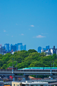 新宿・池袋をバックに東京を走る東北新幹線E5系はやぶさの写真素材 [FYI01646546]