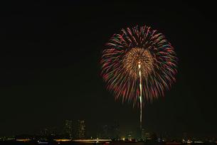 東京湾大華火祭「昇小花芯入ステンドグラス」の写真素材 [FYI01646584]