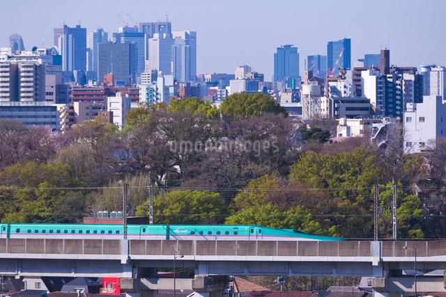 東京を走る東北新幹線E5系はやぶさと新宿高層ビル群の写真素材 [FYI01646632]