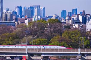 東京を走る秋田新幹線E6系こまちと新宿高層ビル群の写真素材 [FYI01646661]