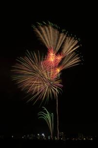 とりで利根川大花火のパ・イ・ナ・ツ・プ・ルの写真素材 [FYI01646667]