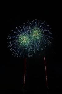 常総きぬ川花火大会の花火GALLERYで緑点滅芯青先白点滅の写真素材 [FYI01646696]