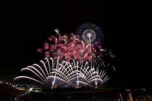 常総きぬ川花火大会音楽と花火のコラボレーション「マエストロ」の写真素材 [FYI01646884]