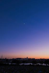 葛飾納涼花火大会で富士山暮色と東京スカイツリーの写真素材 [FYI01646906]