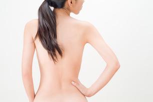 若い女性のウエストの写真素材 [FYI01646958]