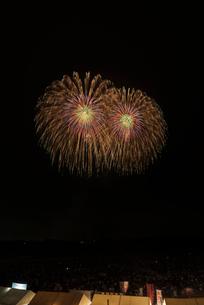 常総きぬ川花火大会 昇り曲導付八重芯錦冠菊の写真素材 [FYI01646980]