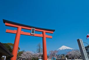 青空に富士山と富士山本宮浅間大社の大鳥居の写真素材 [FYI01646983]
