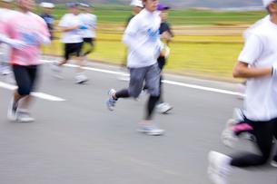 マラソンの写真素材 [FYI01646991]