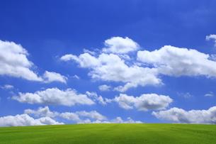 緑の草原と青空に雲の写真素材 [FYI01647028]