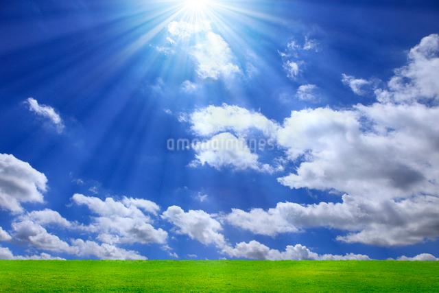 草原と青空に太陽の写真素材 [FYI01647050]