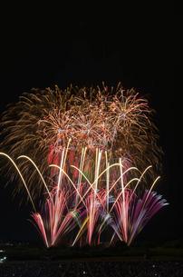 常総きぬ川花火大会 音楽と花火のコラボ「NOW!」の写真素材 [FYI01647078]