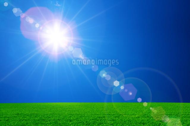 草原と青空に太陽の写真素材 [FYI01647099]