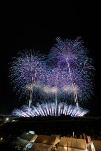 常総きぬ川花火大会 グランドフィナーレの写真素材 [FYI01647184]