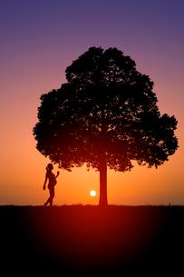 朝日と木と妊婦シルエットの写真素材 [FYI01647222]