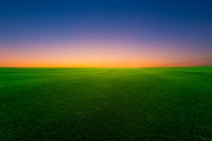 夜明けの空と草原の写真素材 [FYI01647228]