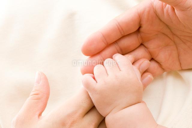 赤ちゃんの手の写真素材 [FYI01647252]