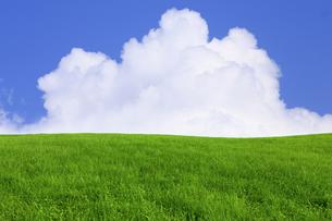 緑の草原と青空に雲の写真素材 [FYI01647277]
