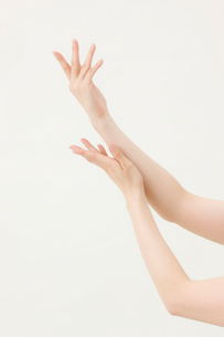 女性の手の写真素材 [FYI01647287]