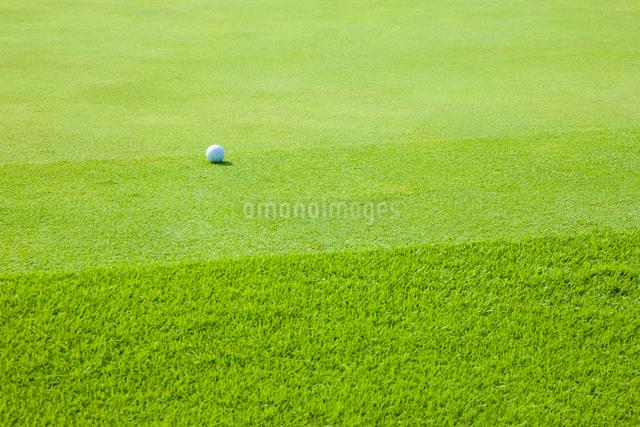 ゴルフ場グリーンの写真素材 [FYI01647528]