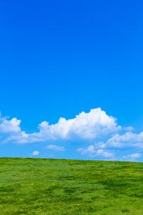 草原と青空の写真素材 [FYI01647563]