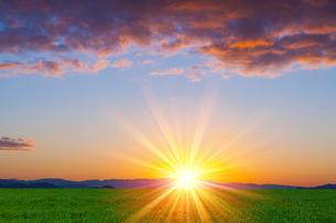 草原と朝日の写真素材 [FYI01647597]
