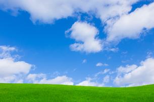 緑の草原と青空に雲の写真素材 [FYI01647610]