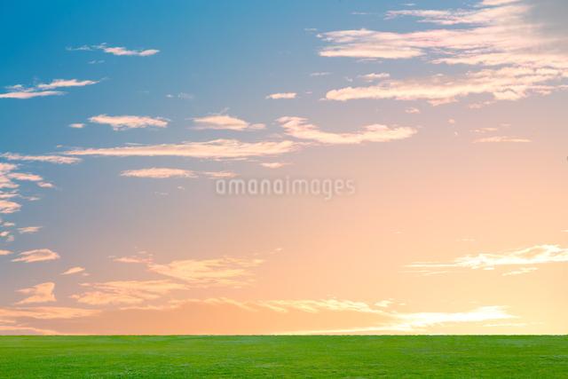 夜明けの空と草原の写真素材 [FYI01647636]