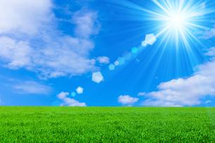 草原と青空に太陽の写真素材 [FYI01647722]