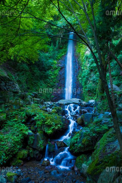 養老の滝の写真素材 [FYI01647835]