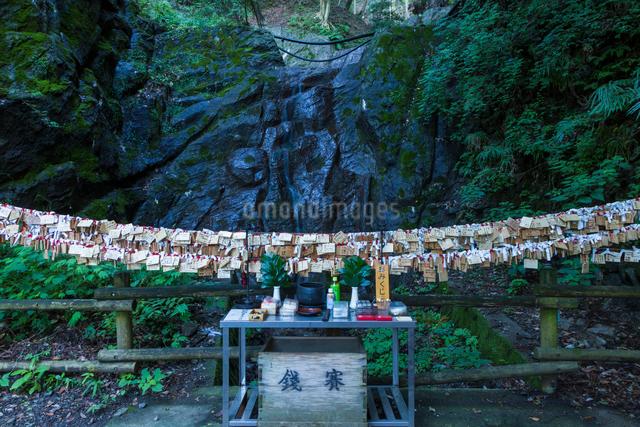養老の滝の写真素材 [FYI01647895]