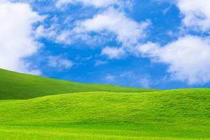 緑の草原と青空に雲の写真素材 [FYI01647982]